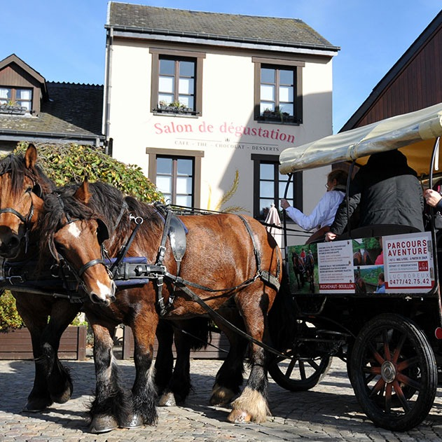 From april to June, take a carriage ride and feed the animals in the wildlife park